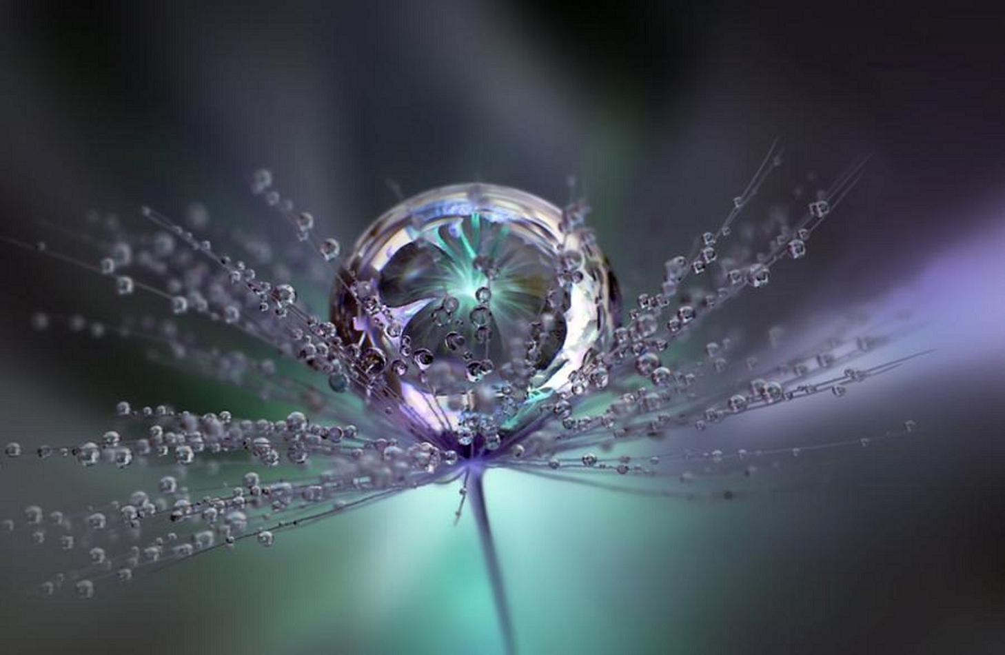 Beautiful Macro Raindrops Creative Photography Wallpaper